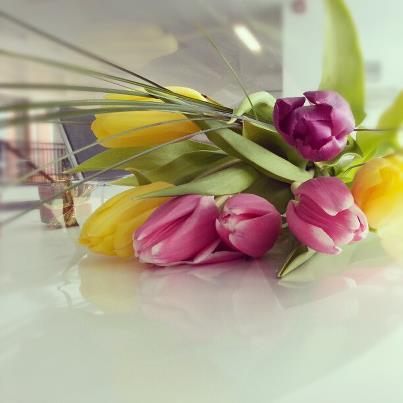 flowers-by-dana