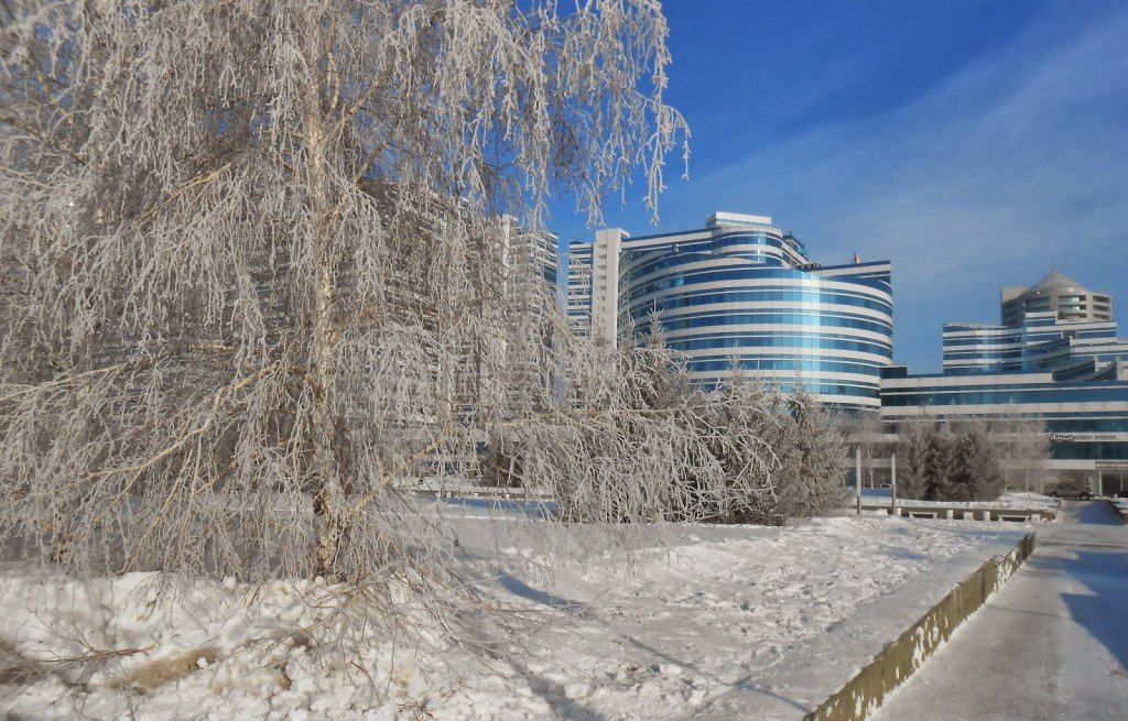 Picture of Astana's winter frost, by Ersatz Expat